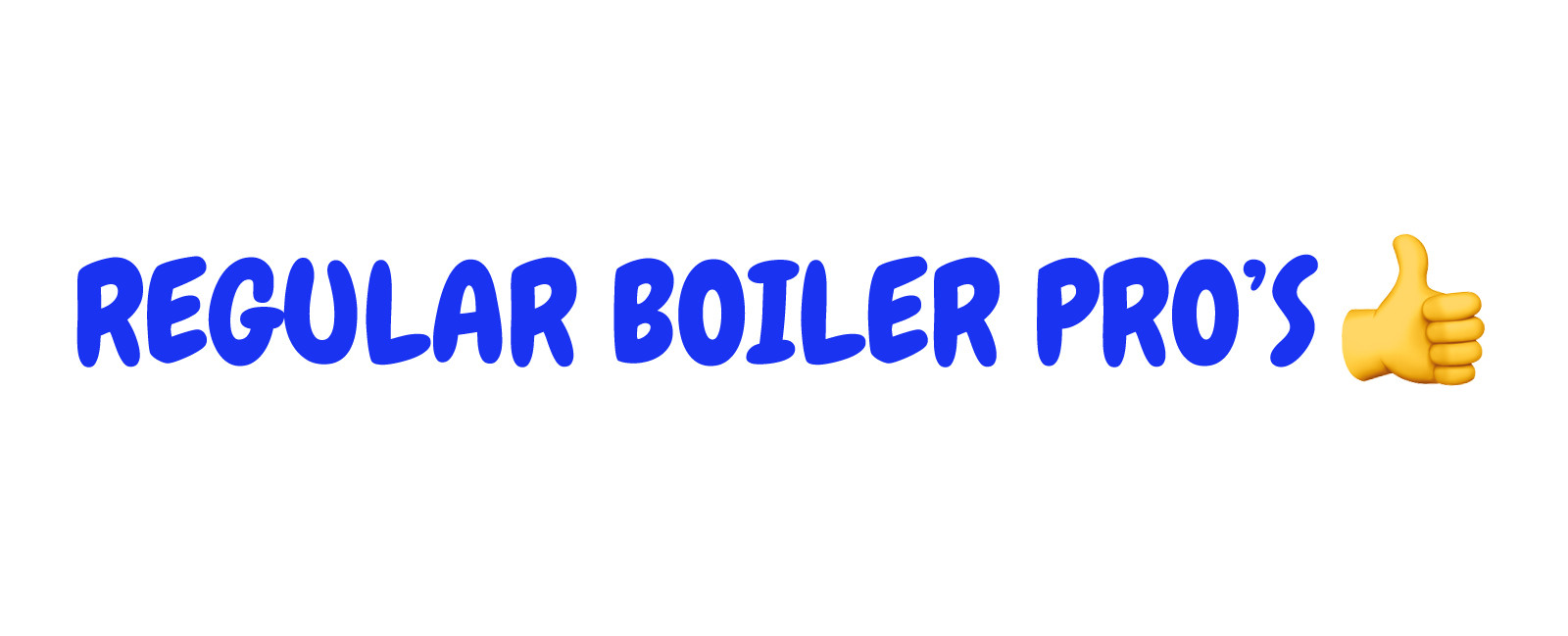 Regular Boiler Pros